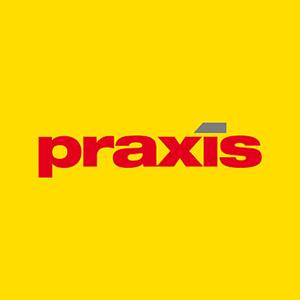 logo-praxis